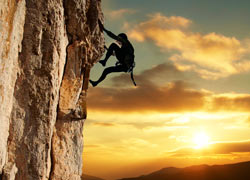 Forex Trading Articles - Survive Then Thrive