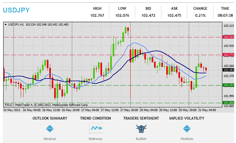 Forex Technical & Market Analysis FXCC May 21 2013 37